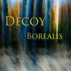 gallery/decoy borealis head front